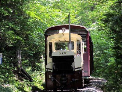 名古屋発〜長野:赤沢自然休養林トロッコ列車*ツアー履歴の為、予約はできません。