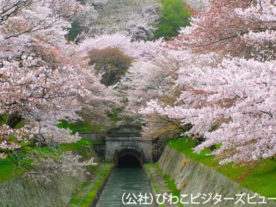 琵琶湖疎水と比叡山*ツアー履歴の為、予約はできません。