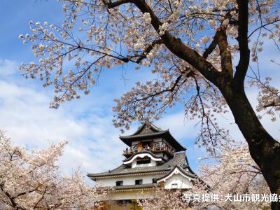 五宝滝・犬山城さくら祭*ツアー履歴の為、予約はできません。
