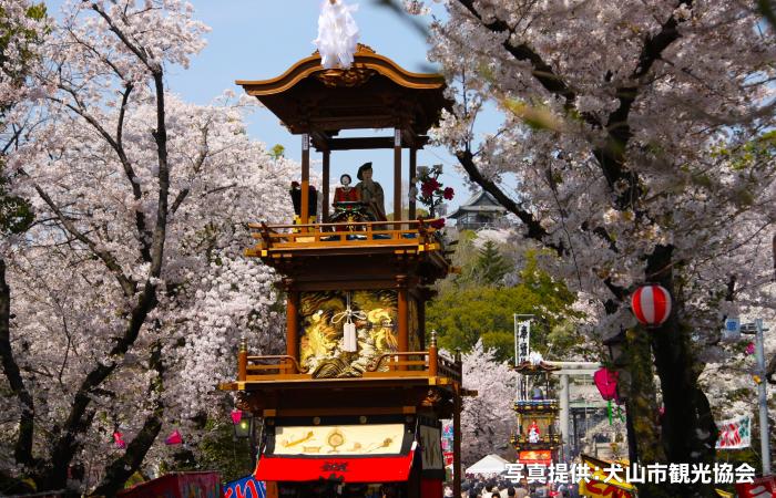 犬山城さくら祭