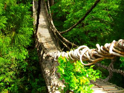 名古屋発〜福井:劔神社と池田町・かづら橋*ツアー履歴の為、予約はできません。